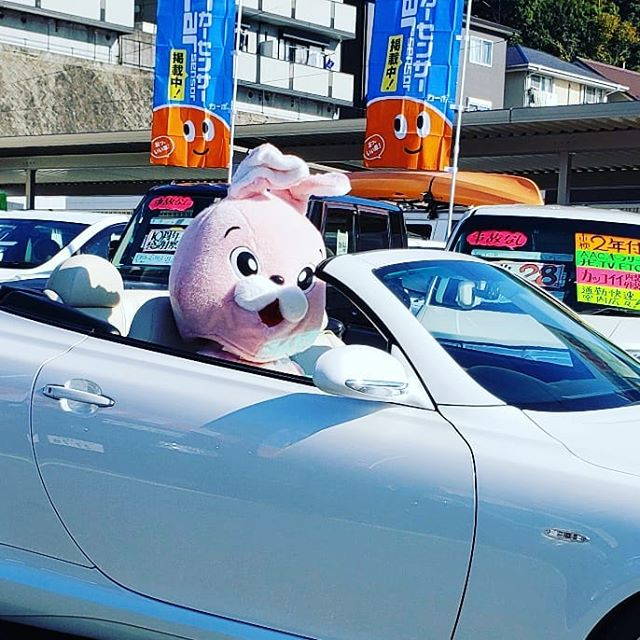 【Instagram】#年末年始 #10周年 #anniversary #株式会社tatsuma #セール #感謝祭 #sale #車が変われば人生が変わる #車を楽しむ人は人生を楽しむ人 #高知中古車 #高知車検安い