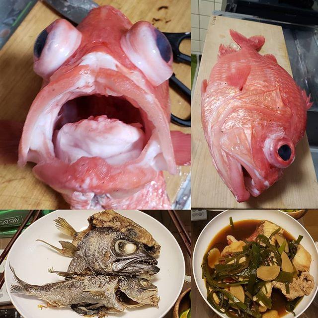 【Instagram】#恵比寿鯛 #くろむつ #漁師飯 #男飯 #おいしい