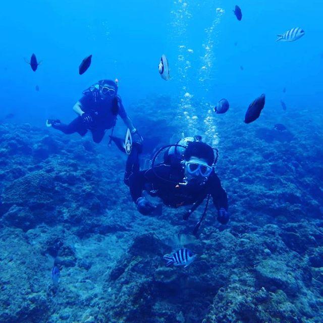 【Instagram】#沖縄 #ダイビング #むるぬーし #青い海 #車が変われば人生が変わる #車を楽しむ人は人生を楽しむ人 #okinawa